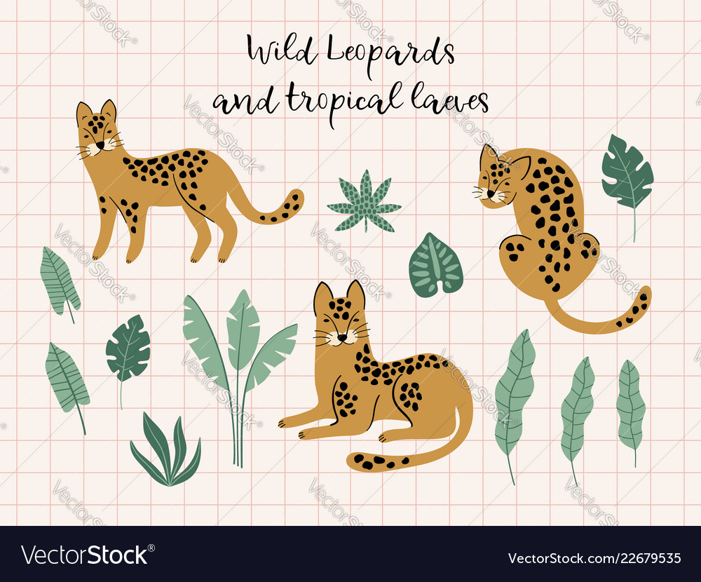 Creative hand drawn collection of leopards and