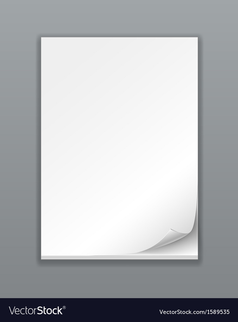 Empty Paper Stack vector image