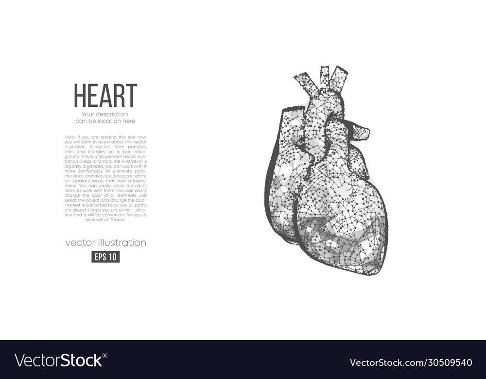 Abstract silhouette polygonal organ heart