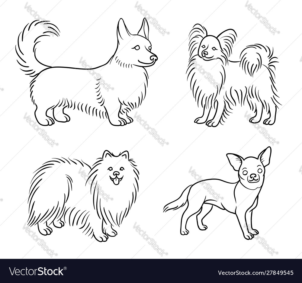 Dogs different breeds in outlines set6