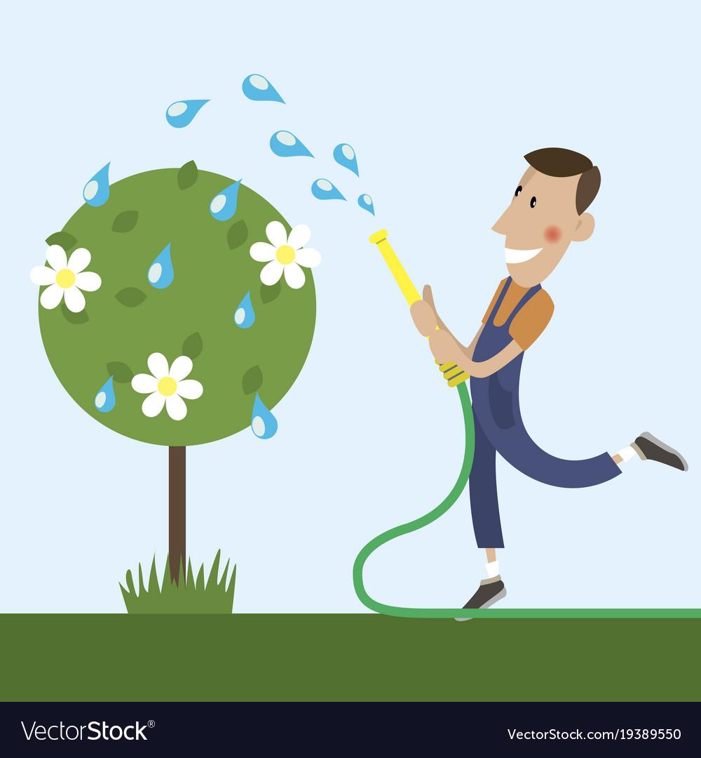 Gardener is watering