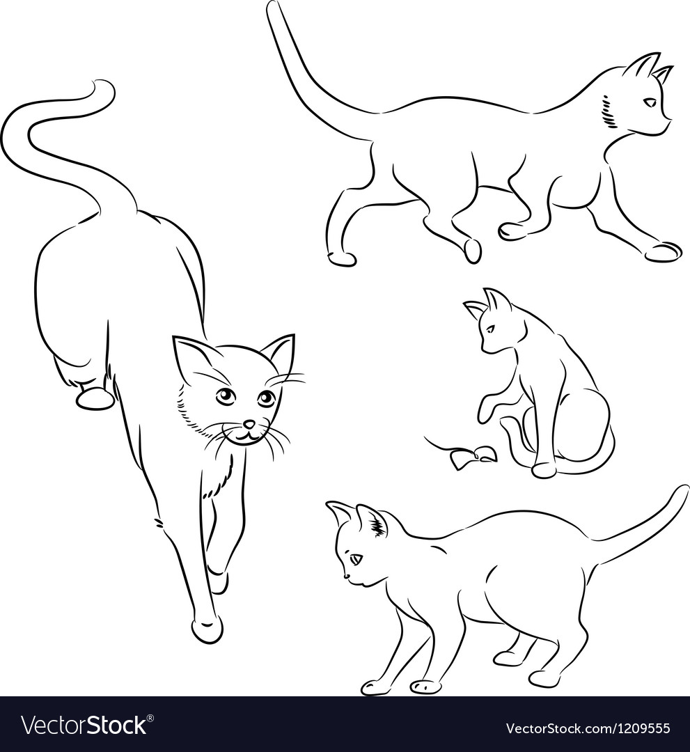 cat in motion sketches royalty free vector image