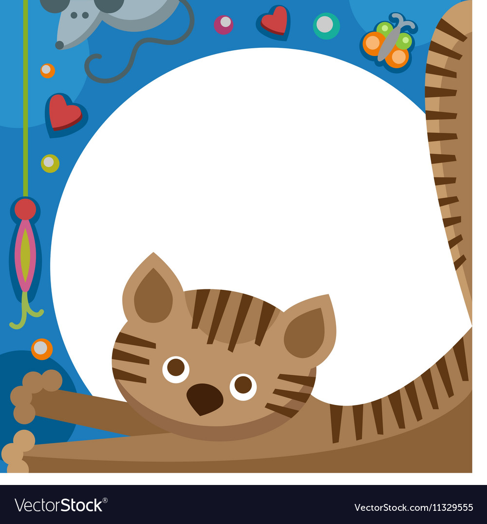 Cute furry cat animal