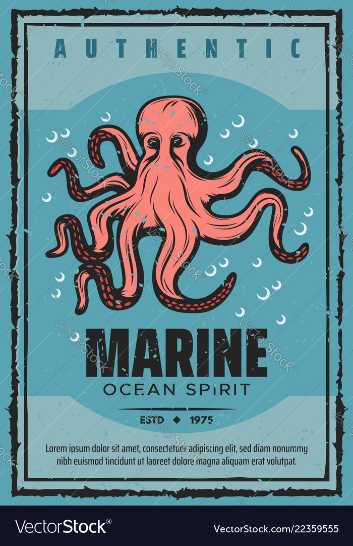 Marine adventure ocean octopus
