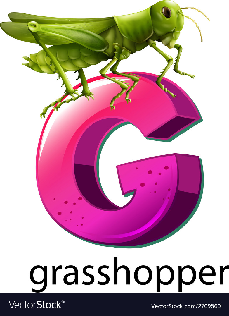 A letter G for grasshopper Royalty Free Vector Image