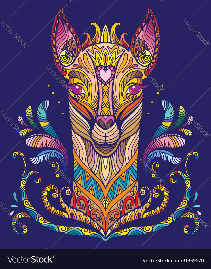 Colorful lama