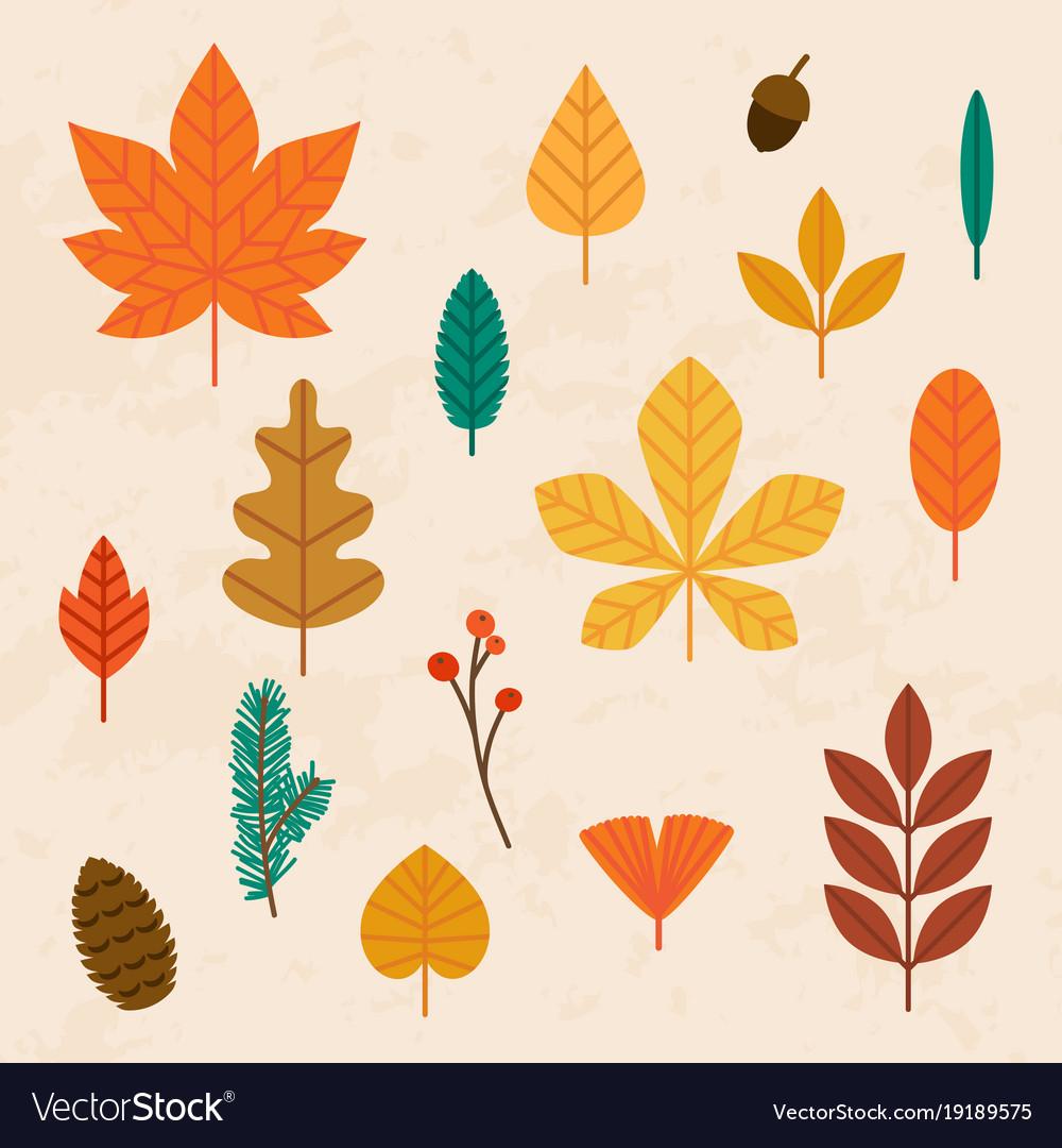 Autumn leaves set flat design modern