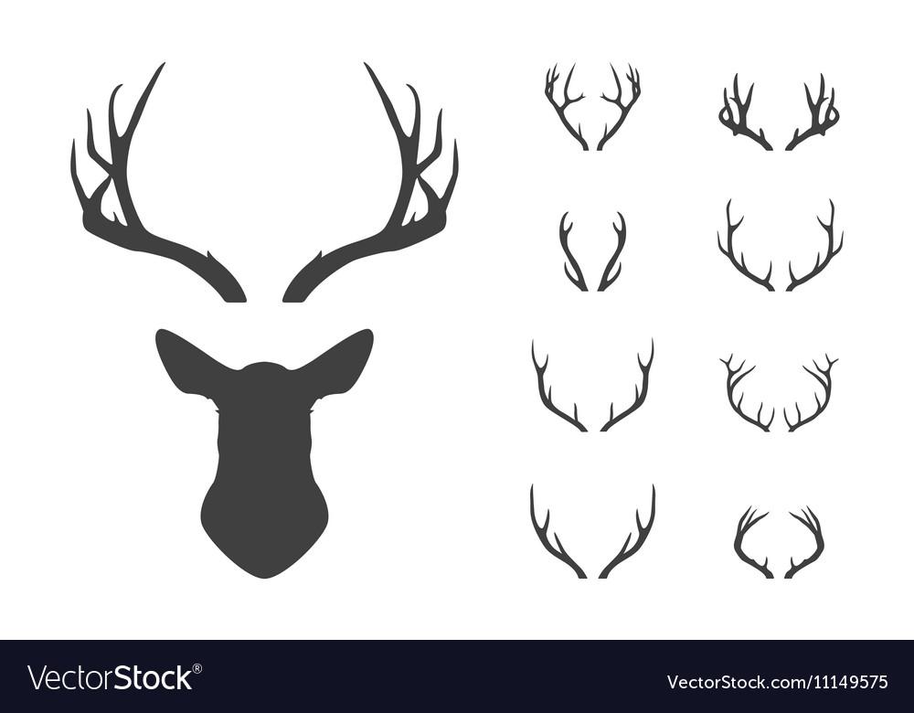 Deer s head and antlers set