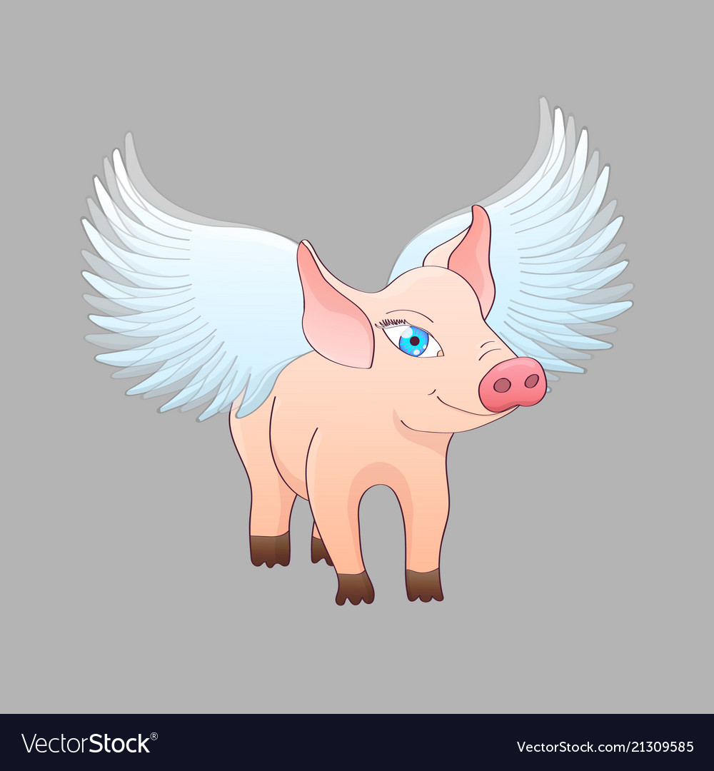 Piglet with wings isolated on gray background