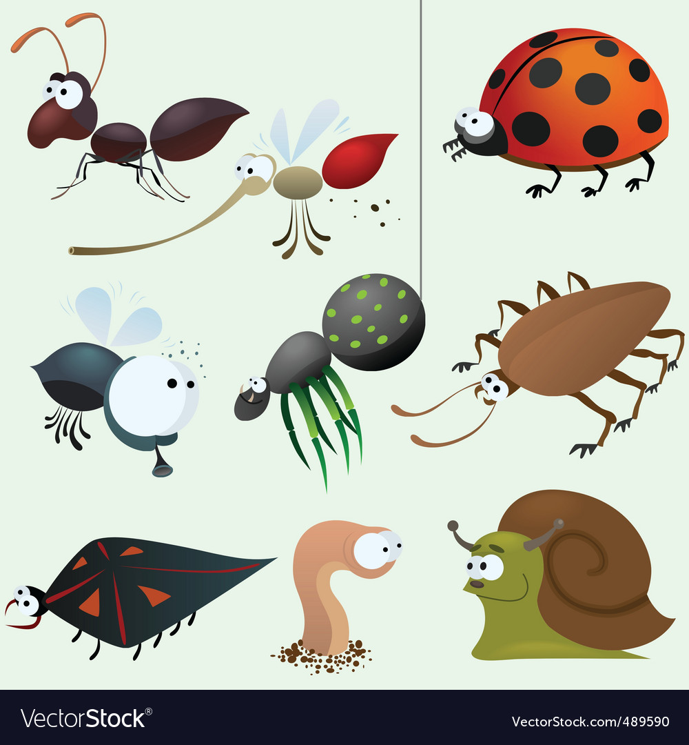 Cartoon insect set
