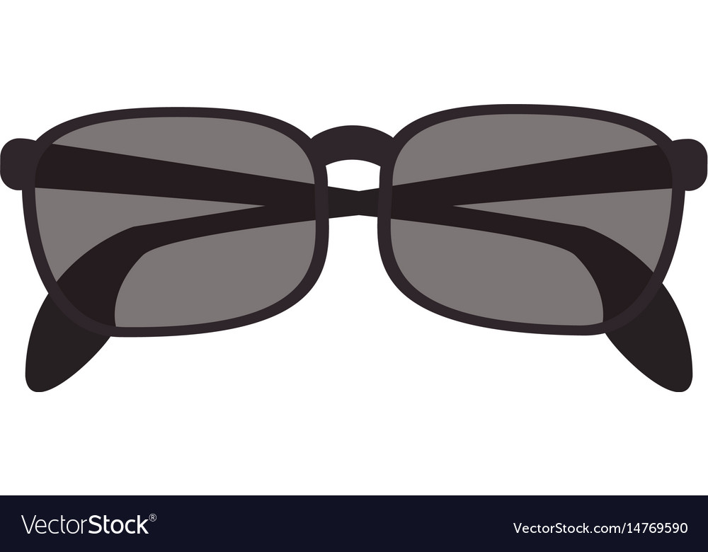 Isolate sunglasses icon image vector image