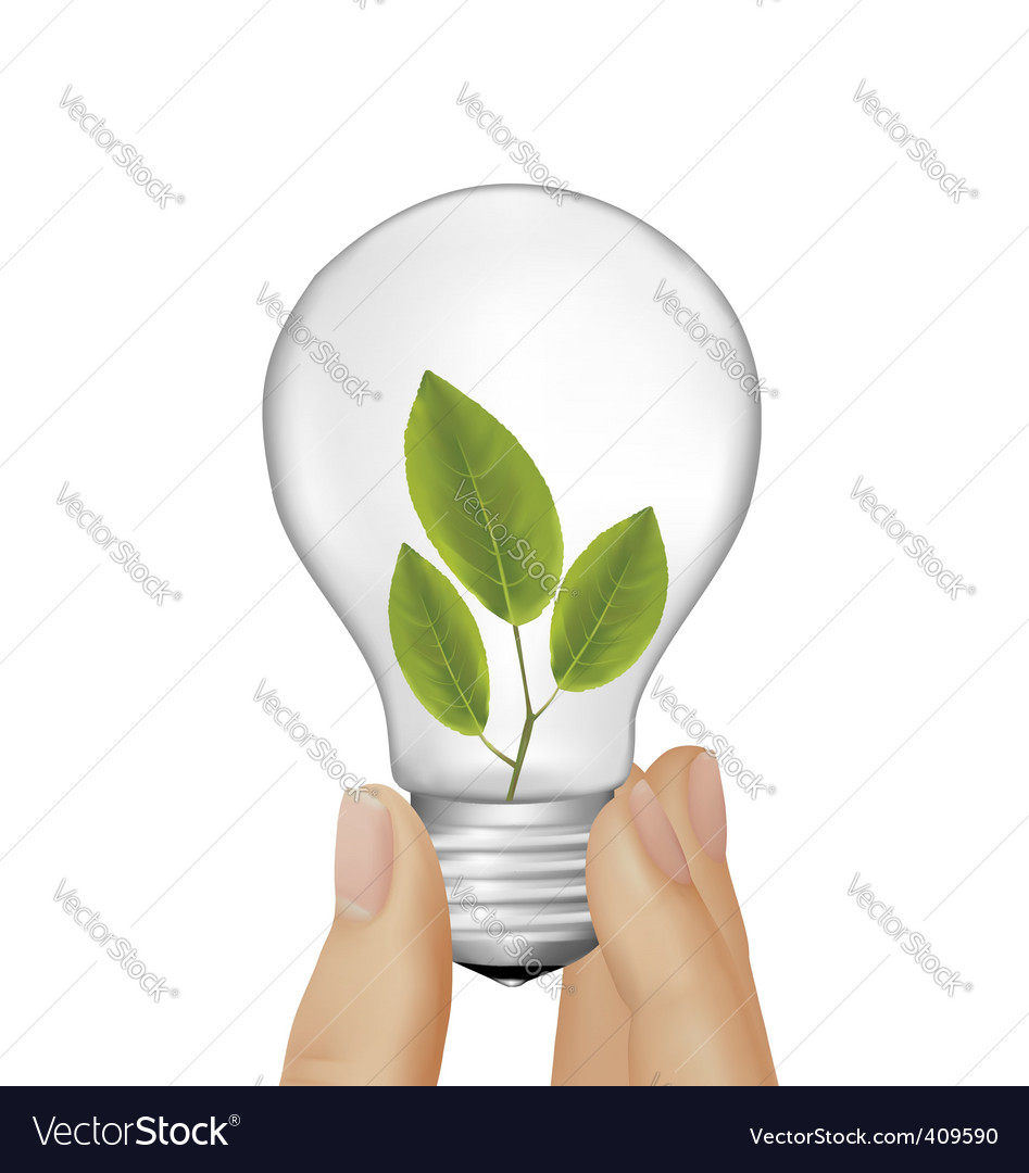 Plant inside light bulb