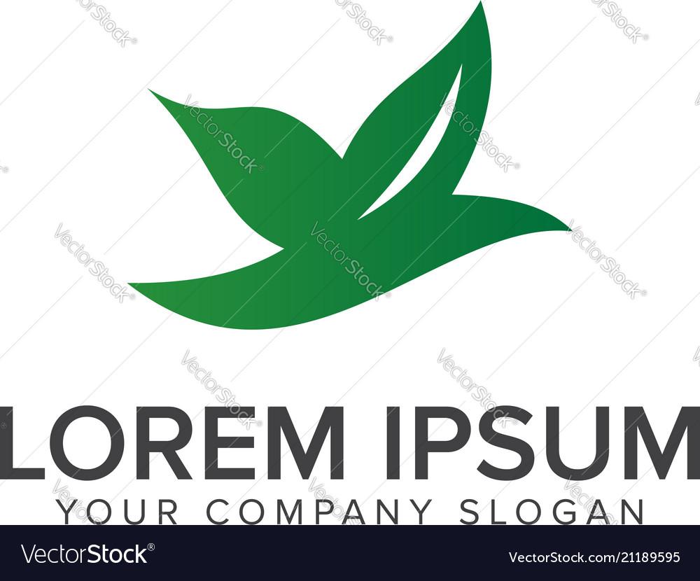 Leaf bird logo design concept template