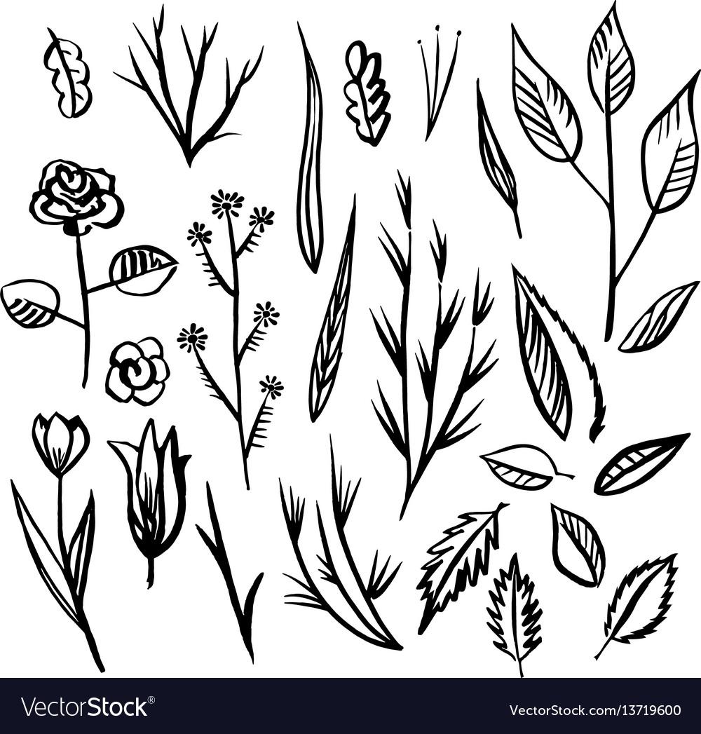 Floral designs detail sketch