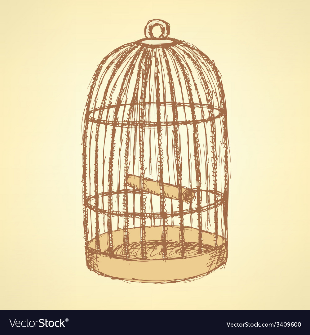 Sketch Bird Cage In Vintage Style Vector Image