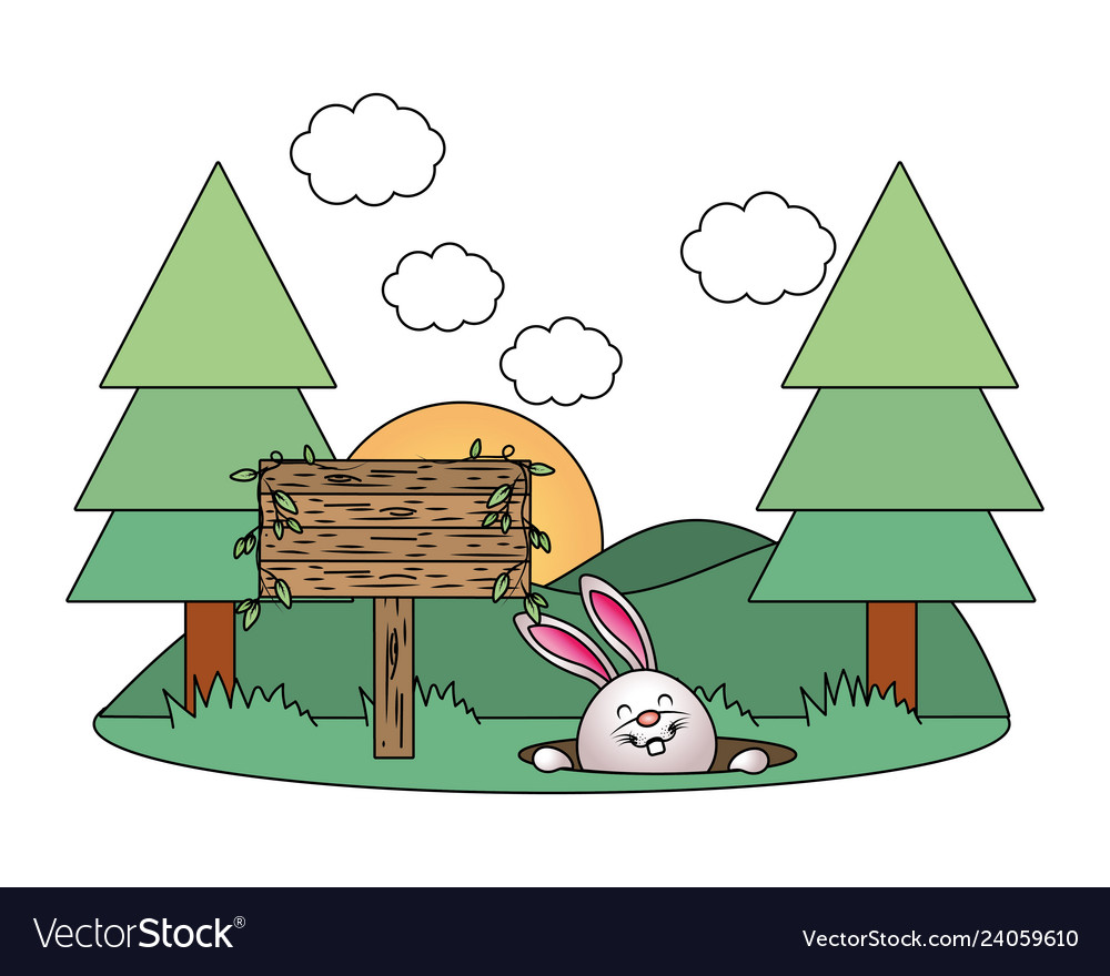 Bunny with wooden sign