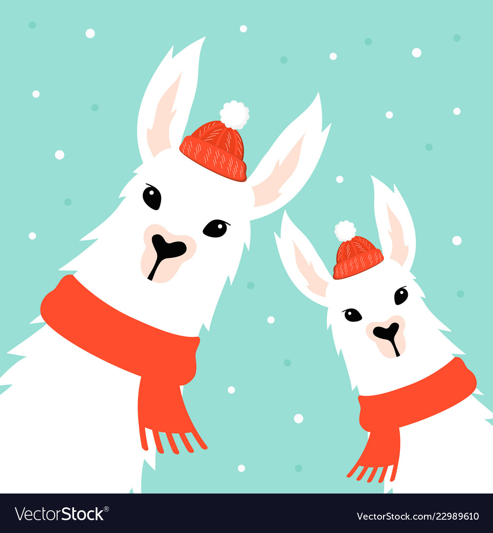 Llama Christmas.Christmas Card With Llama