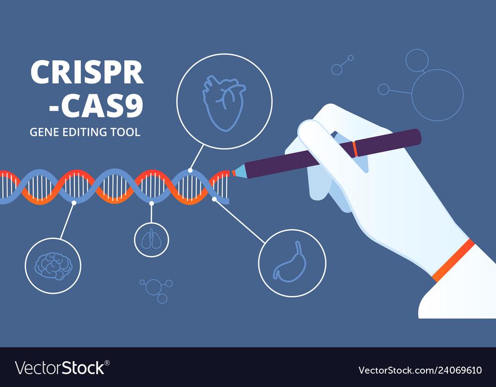 Crispr concept cas9 dna and gene engineering