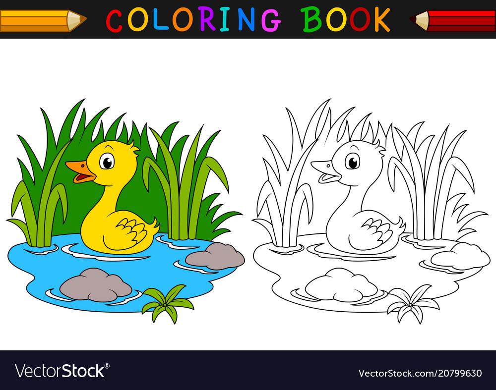 Cartoon duck coloring book Royalty Free Vector Image