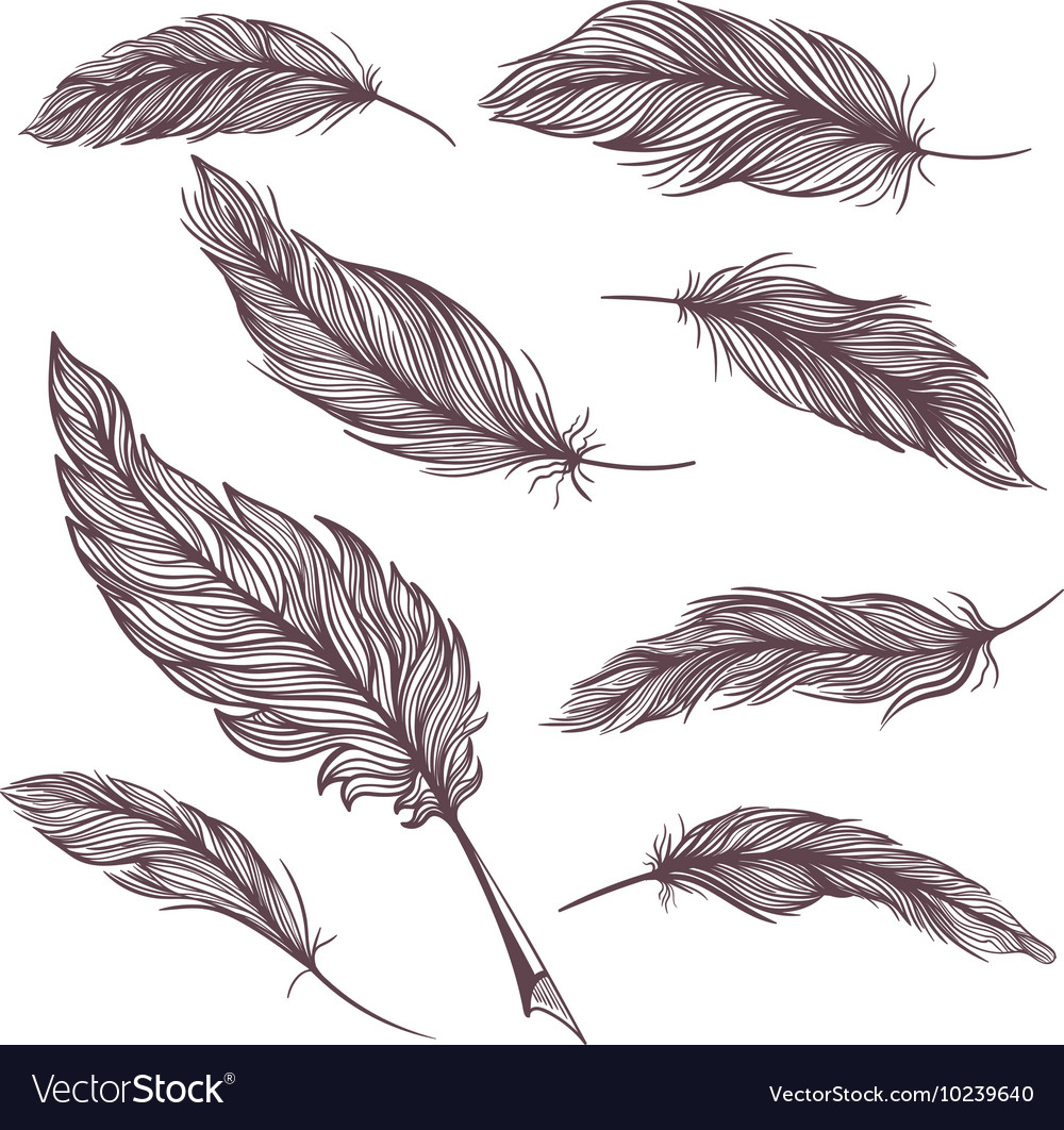 Elegant Feathers Set
