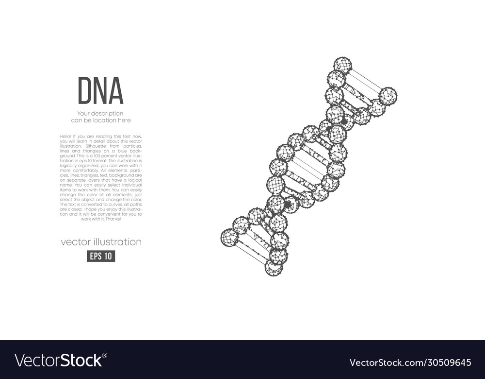 Abstract silhouette polygonal dna