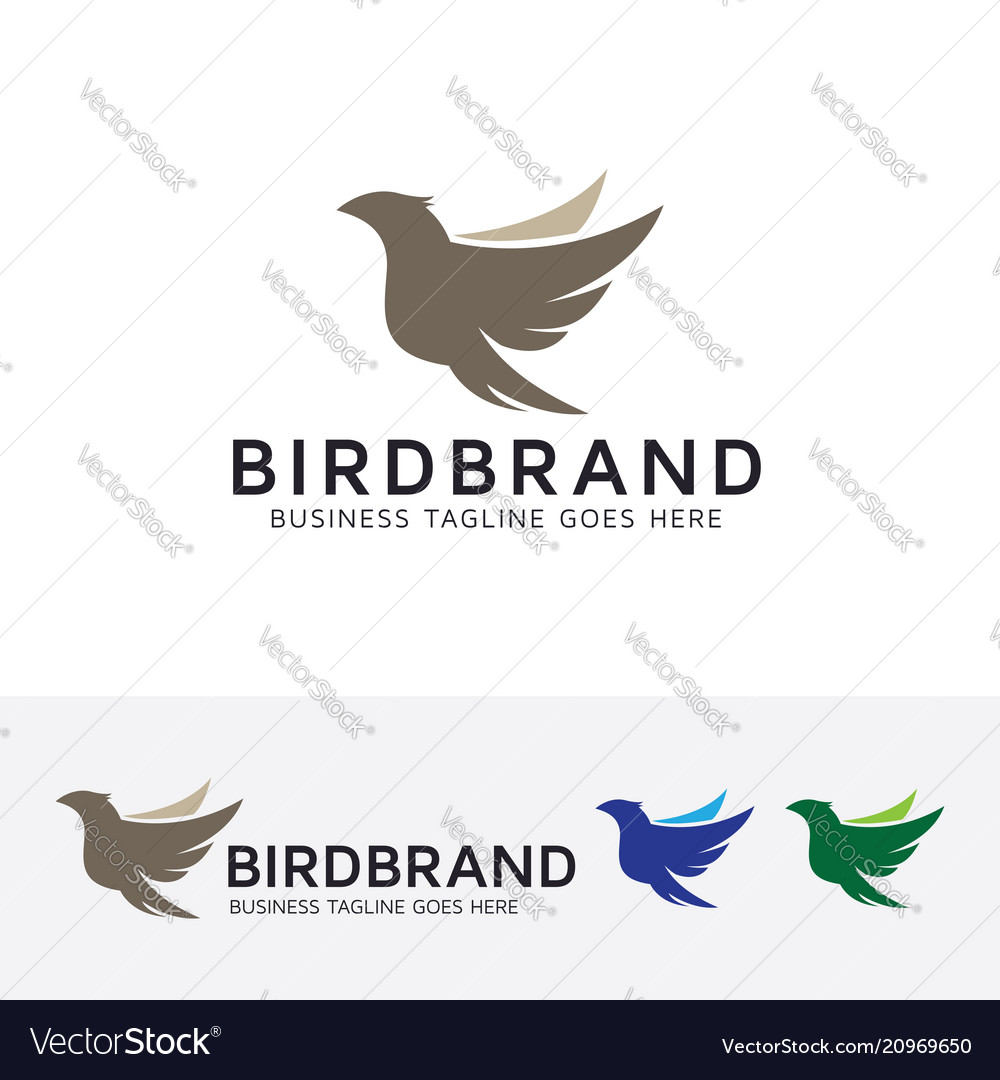 Bird brand logo design