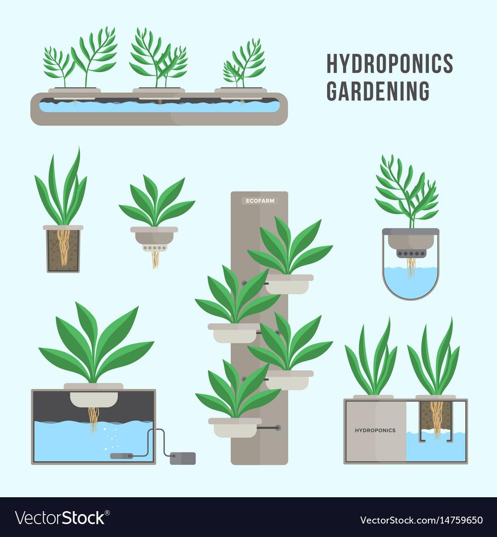 Hydroponic system gardening technology