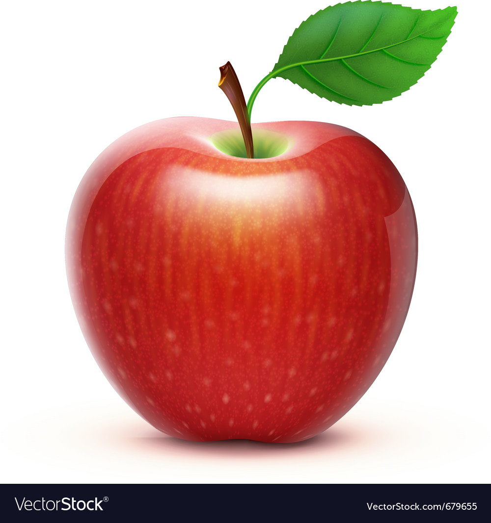 red apple royalty free vector image vectorstock rh vectorstock com apple vector psd apple vector programs