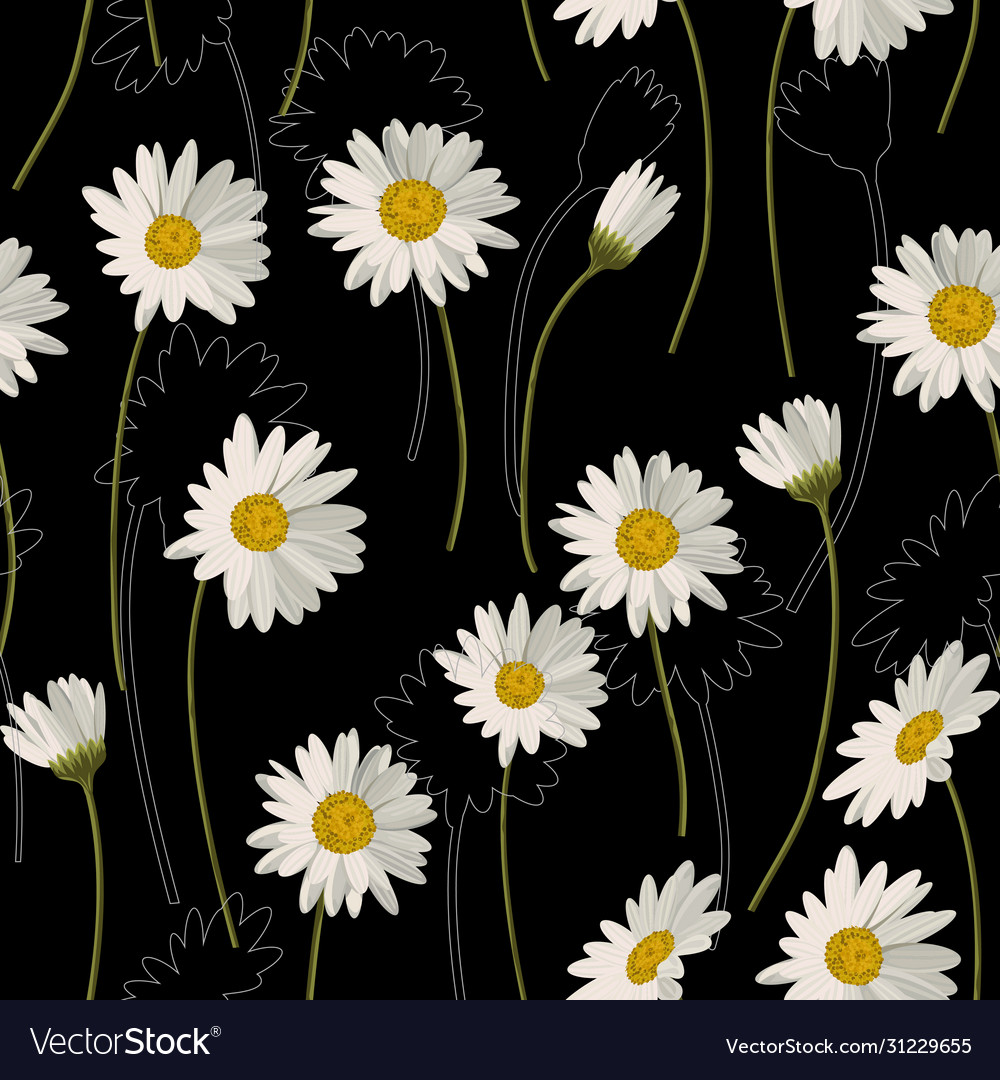 Seamless pattern with white daisies on black