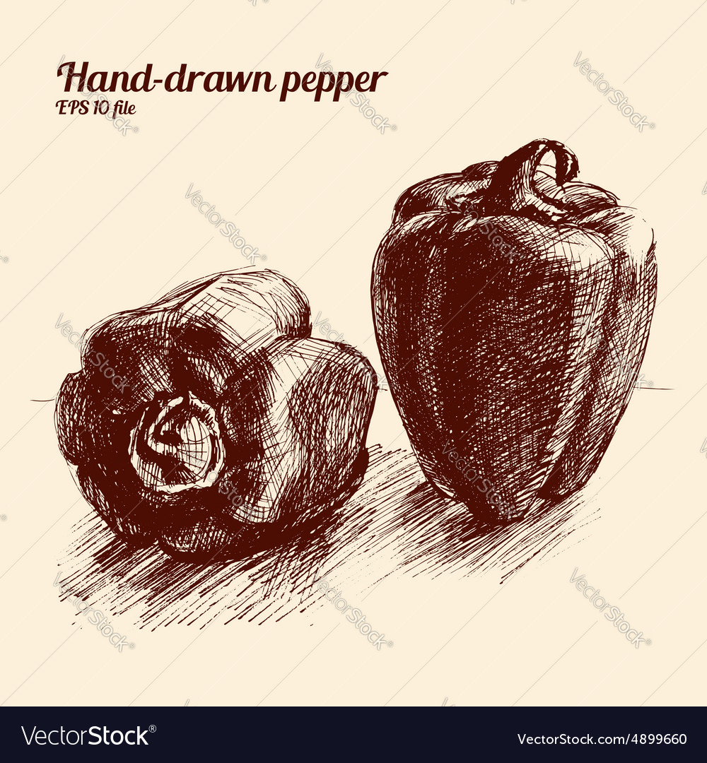 Sketched peppers