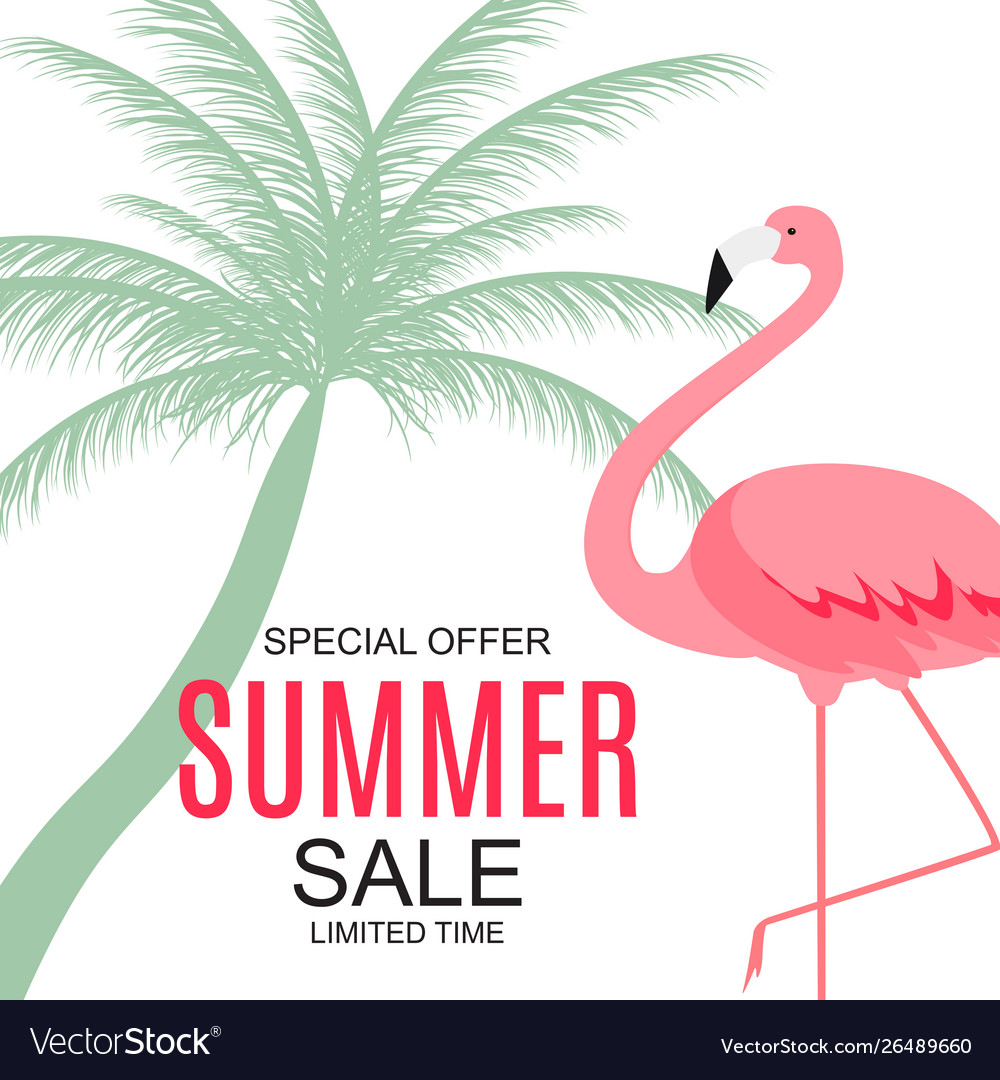 Summer sale concept with colorful cartoon pink