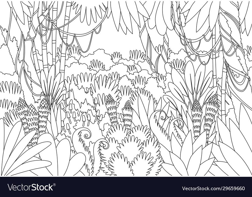 Tropical jungle dark background forest