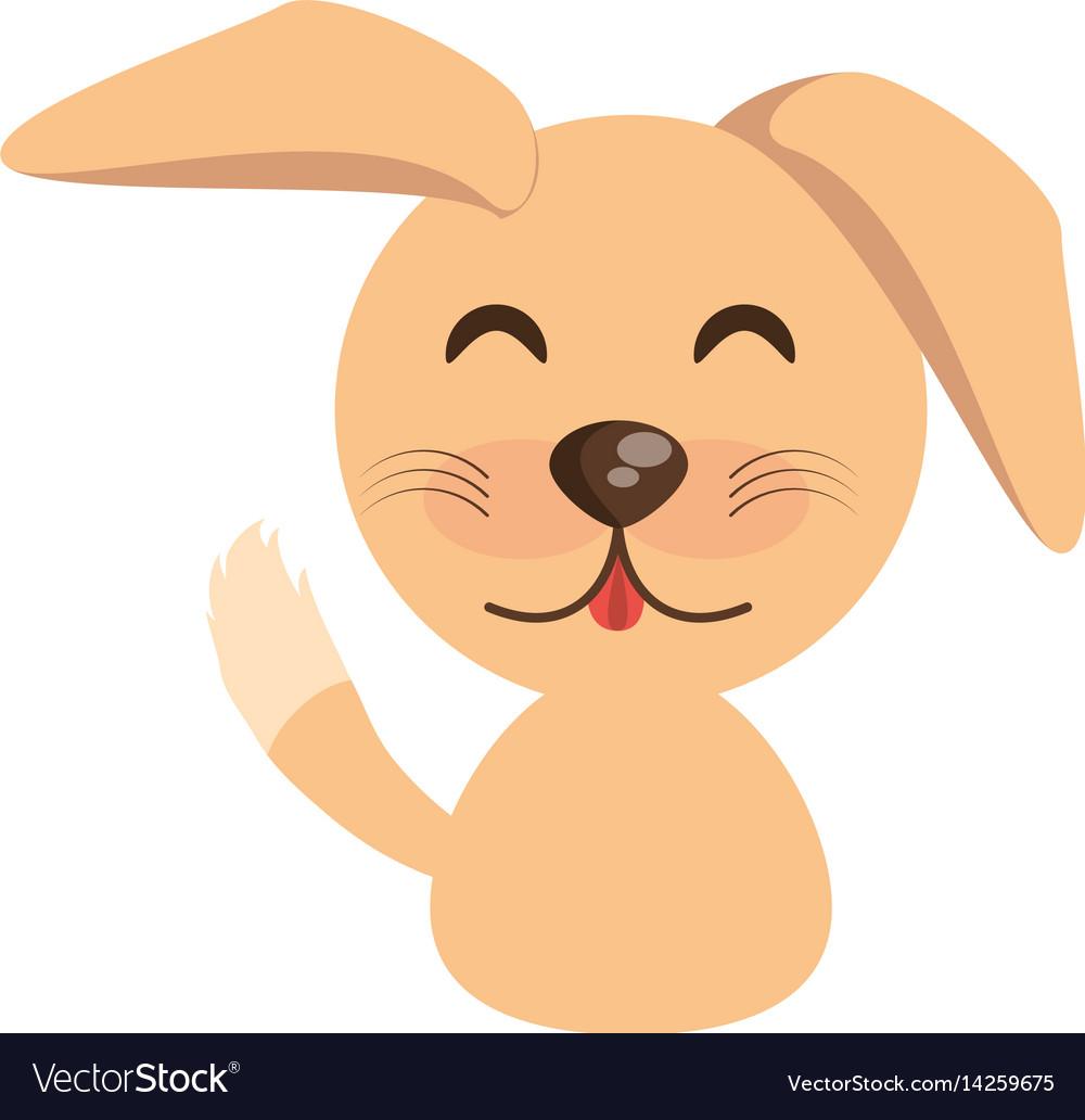 Cute dog animal character funny