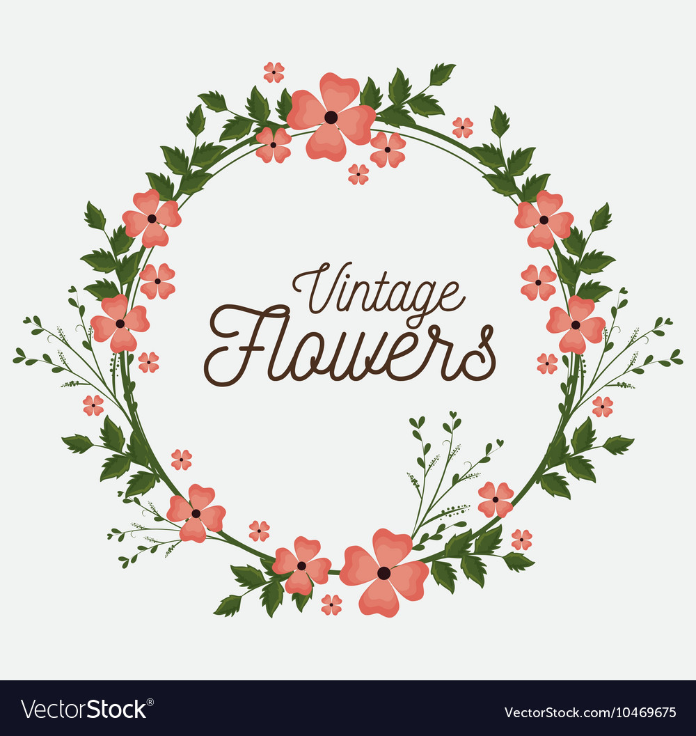 Vintage Flower Frame Vector Png Kayaframe Co