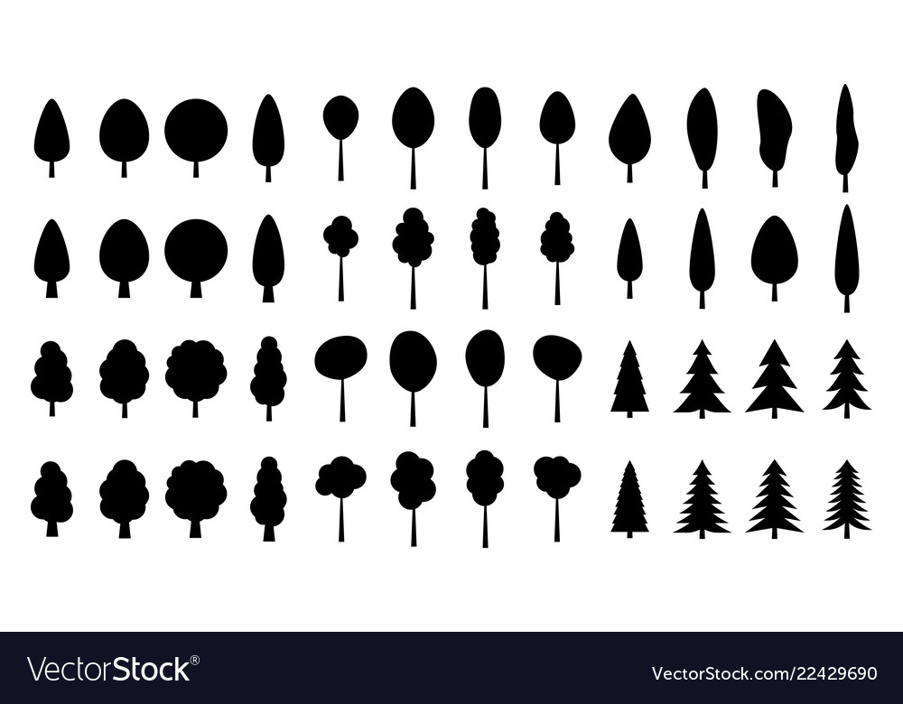 Set of pine trees silhouette isolated on white bac