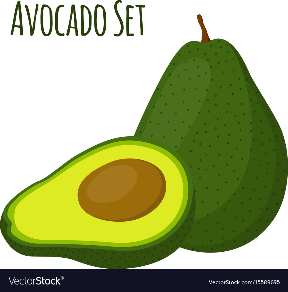 Avocado whole and slice tropical summer fruit