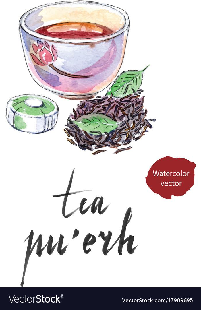 Ripe Chinese Puerh Tea Vector Image