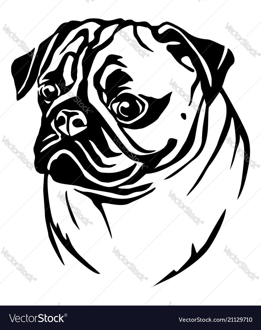 d6519820cc92 Decorative portrait of pug Royalty Free Vector Image