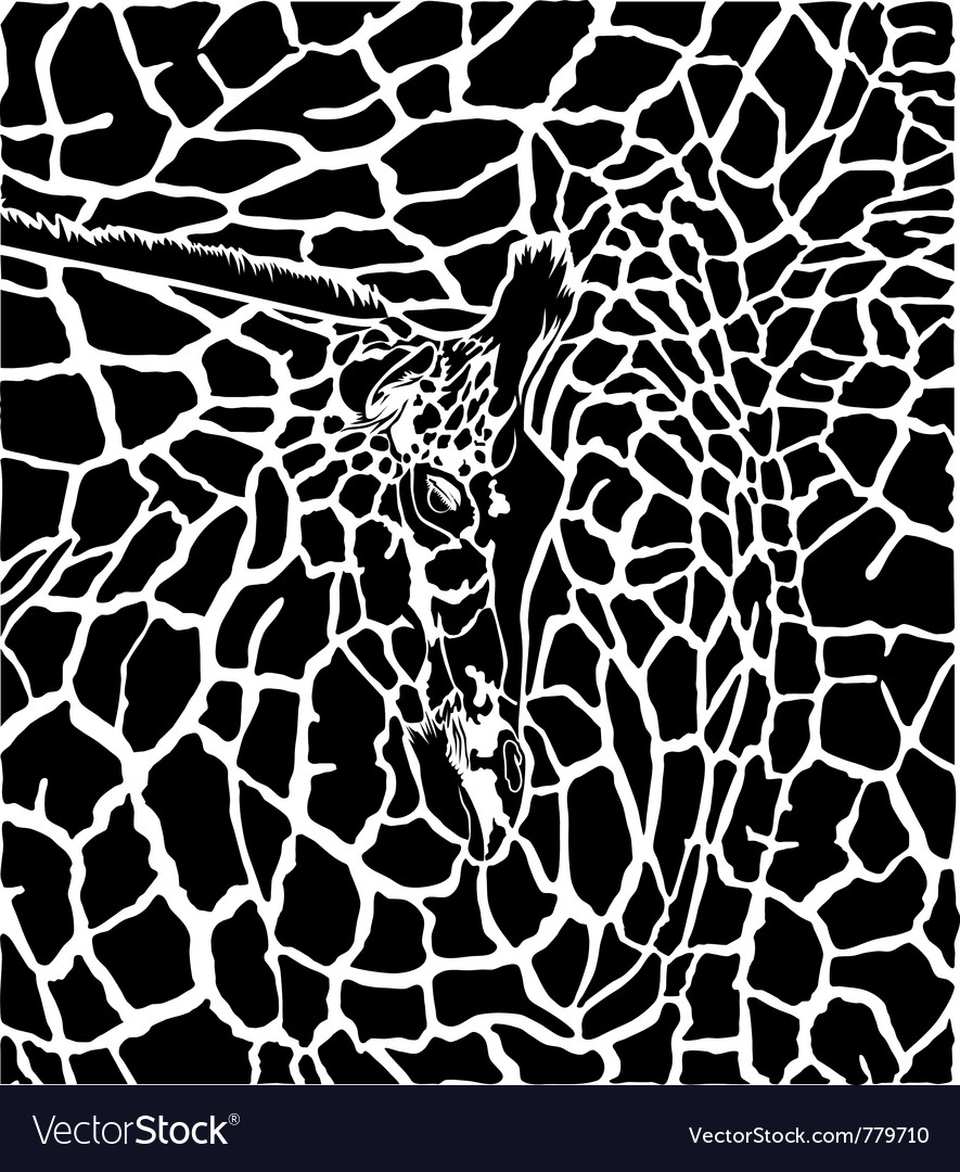 Giraffe pattern background vector image
