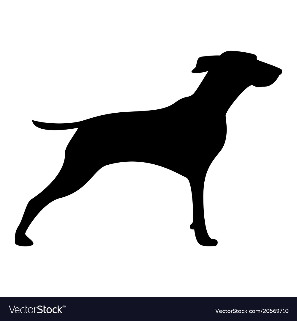 Hunter dog or gundog icon black color icon