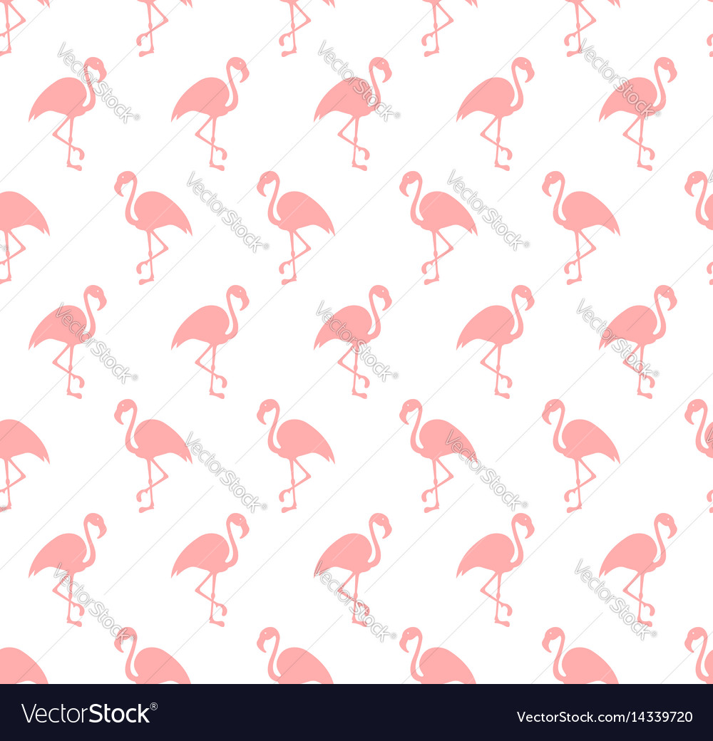 Flamingo bird background vector image