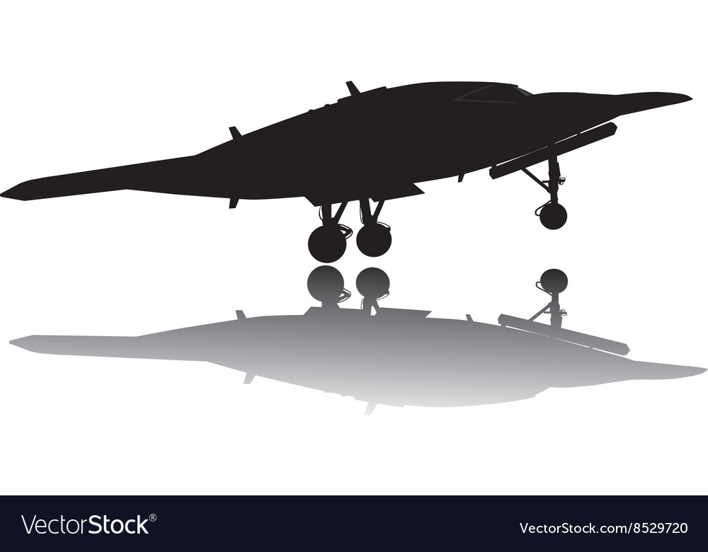 Weapon Drones vector image