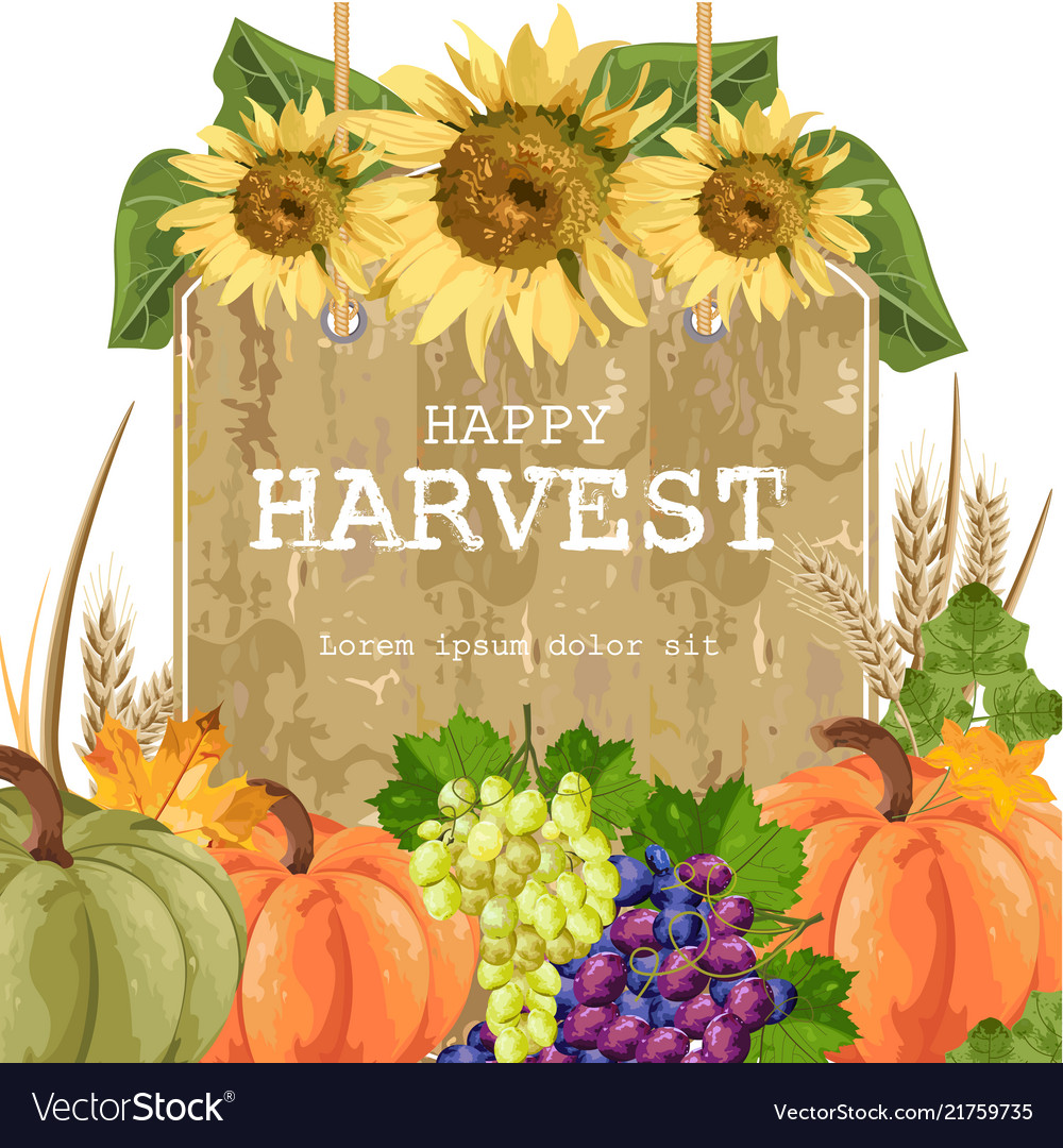 Autumn harvest with pumpkins grapes sunflower