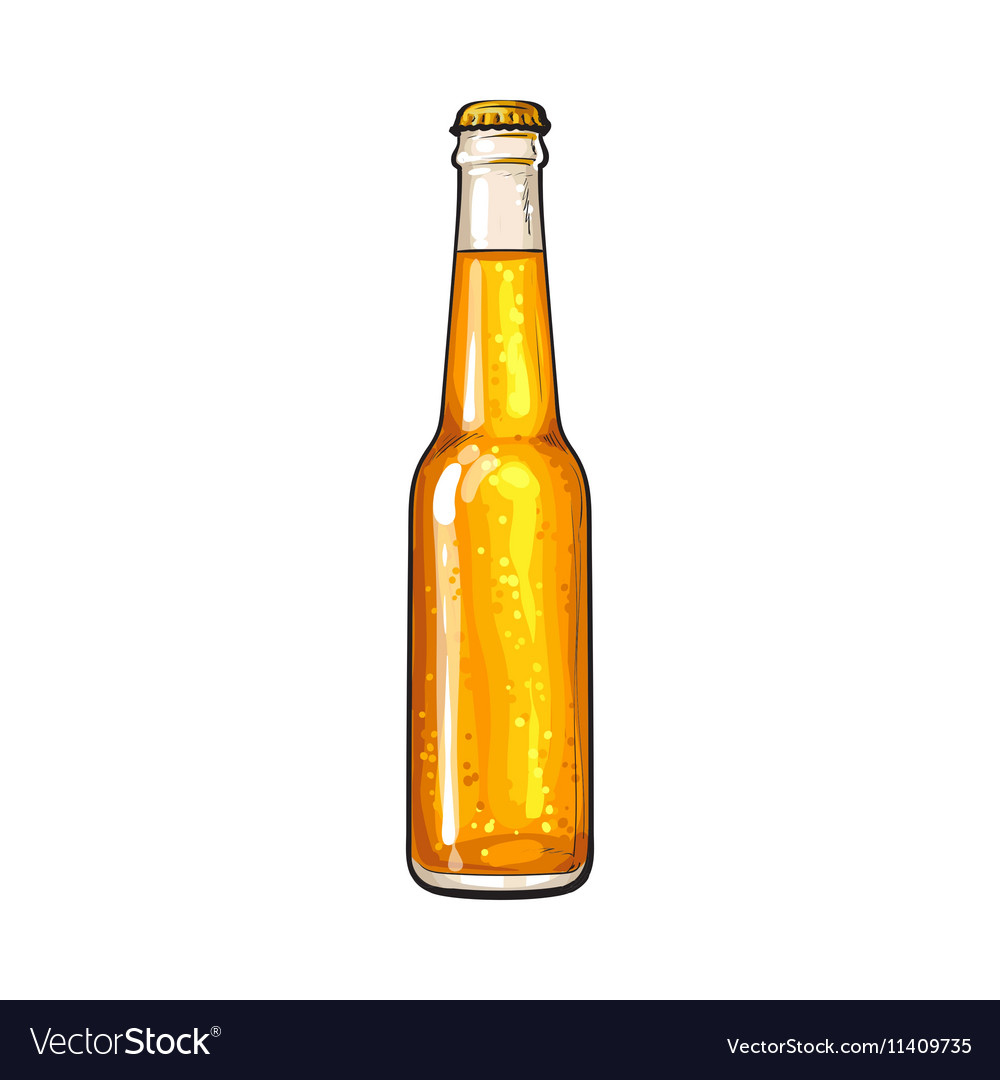Closed bottle of cold beer sketch style vector image