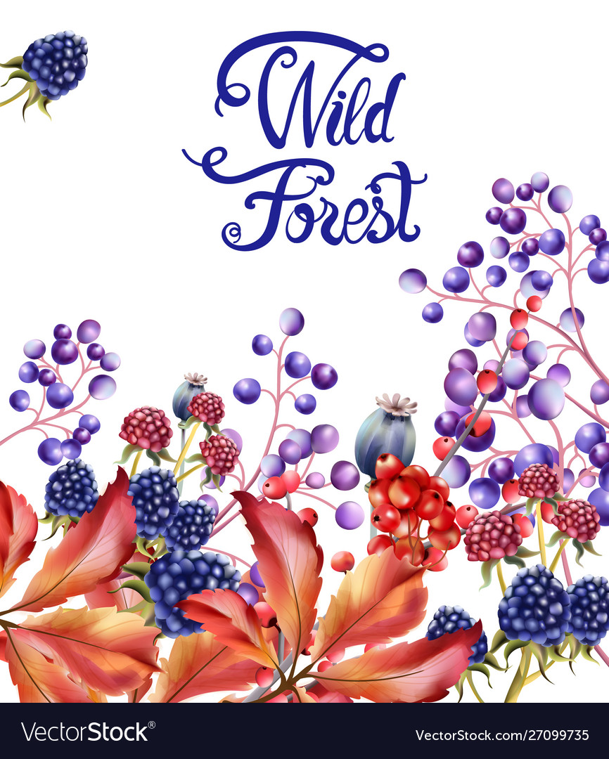 Wild forest fruits bouquet card