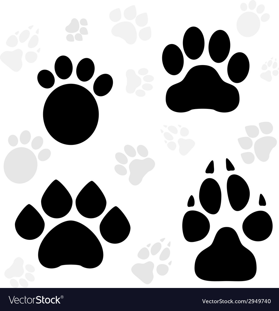 Paws & Claws