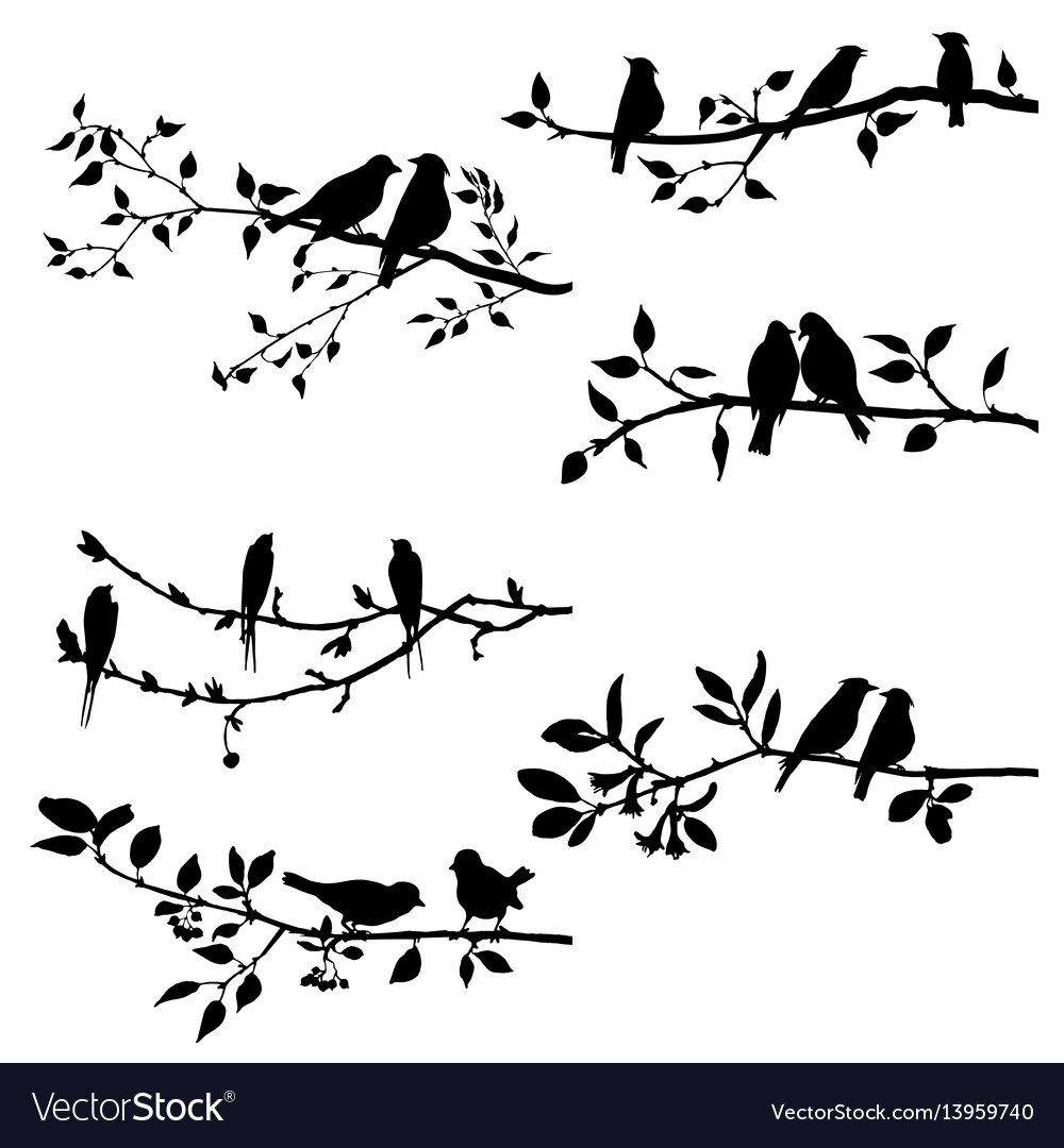 Tree branch silhouette with bird