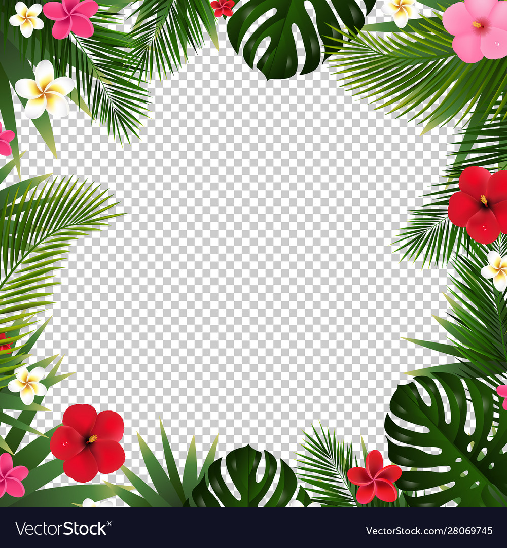 Palm leaf and flowers isolated transparent