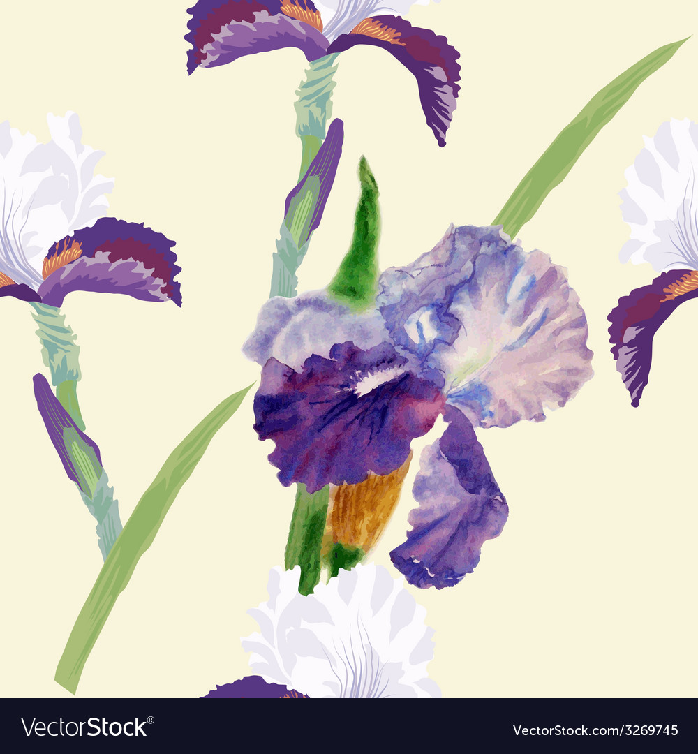 Seamless pattern with watercolor irises-03