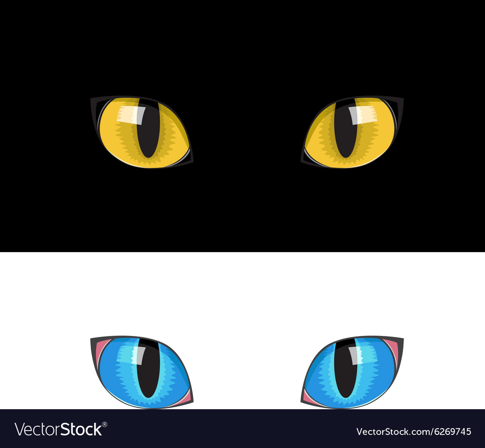 Yellow cat eyes Royalty Free Vector Image - VectorStock (1000 x 924 Pixel)